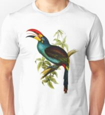 Grey-breasted Mountain-toucan (Andigena hypoglauca) T-Shirt