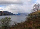 Loch Earne, Scotland by Carol Bleasdale