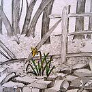 Daffodil  by Marita McVeigh