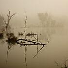 Horseshoe Lagoon Refelctions  by D-GaP