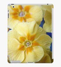 Yellow Primula Flowers iPad Case/Skin