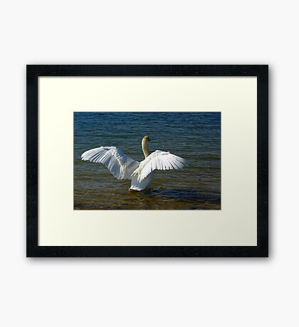 I Need to Stretch My Wings Framed Print