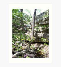 beautiful creeks in Missouri Art Print