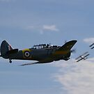 TIger Moths and unidentified aircraft by Peter Hall