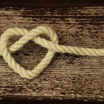 Knot of heart by NaCl01