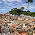 Bay of Fires - Tasmania - Australia by TonyCrehan