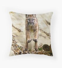 She flies through the air with the greatest of ease...... Throw Pillow