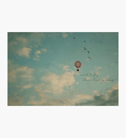 To fly Photographic Print