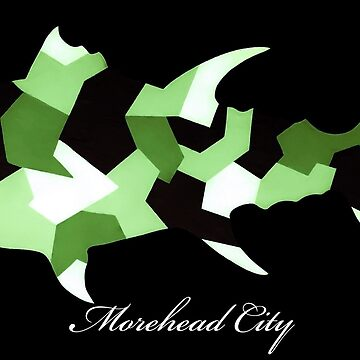 Morehead City Camo Tuna by barryknauff