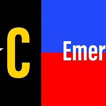 Emerald Isle NC Police Fire/EMS flag by barryknauff