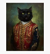 Lámina fotográfica caballero gato negro