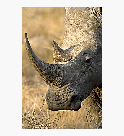 Female Rhino Getting Her Point Across Photographic Print