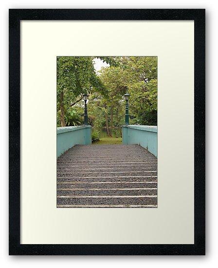 Ninoy Aquino Park and Wildlife Nature Center bridge by walterericsy