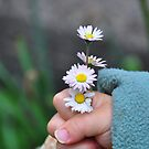 Flowers For Mom by Daidalos