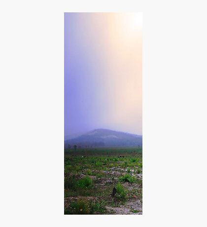 Misty Mount Cooke  Photographic Print