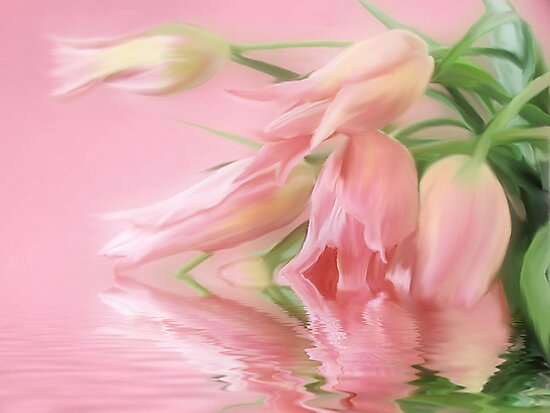Tulips Wish  by Elaine Manley