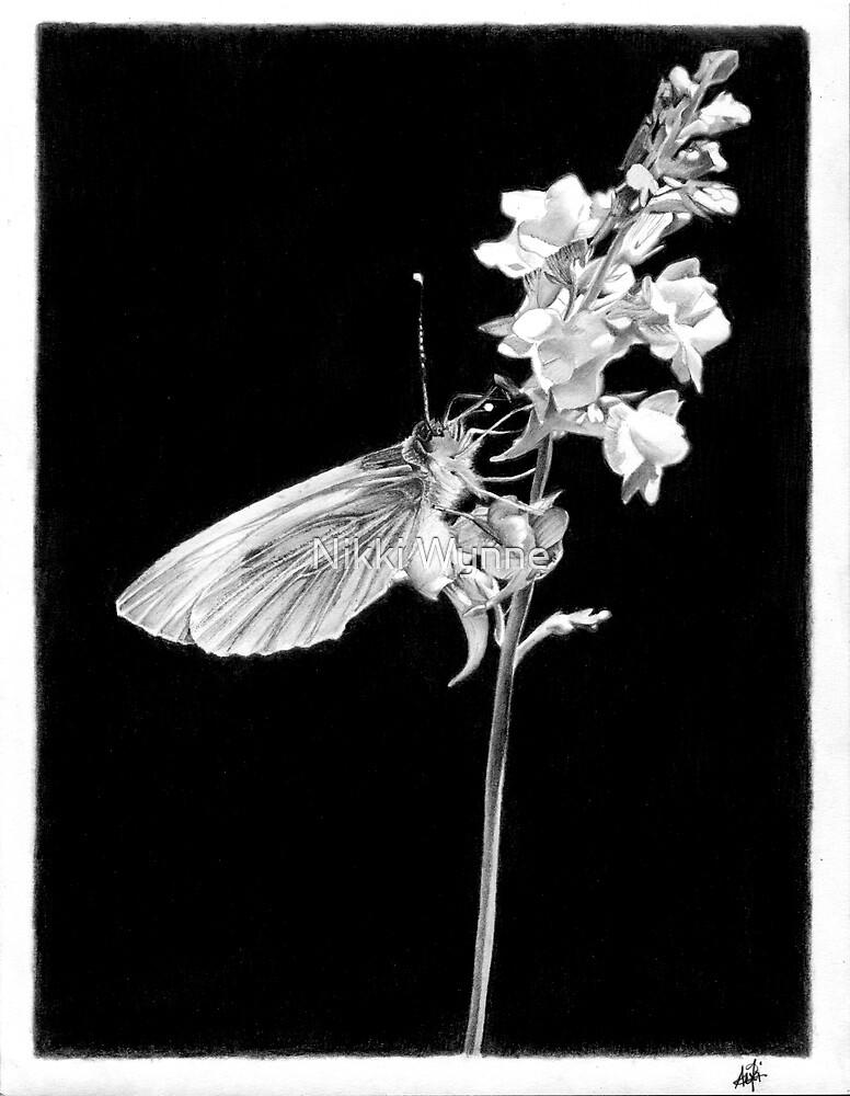 Paper Wings by Nikki Wynne