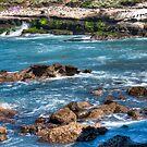 La Jolla Cove by Bill McCarroll