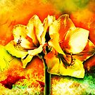 Spanish color splash in bloom green and orange by mjvision Mia Niemi by mjvisiondesign