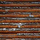 strata - roller door on woolstore by Tony Kearney
