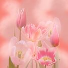 Pink Poetry by walstraasart