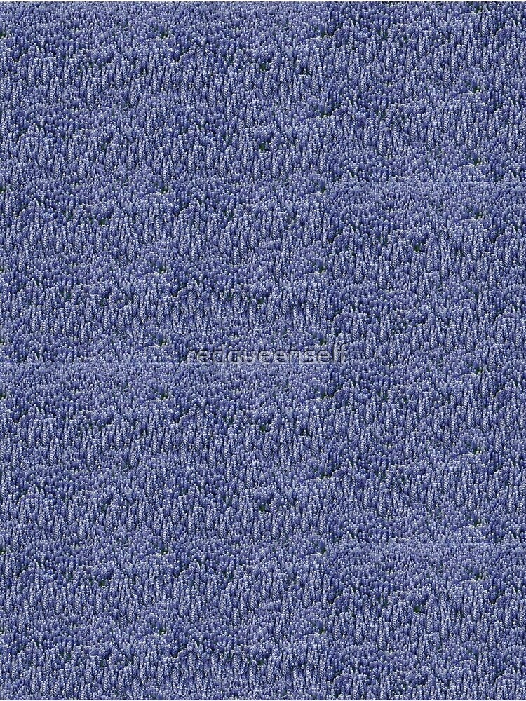 Texas Bluebonnets by redqueenself