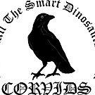 Corvids - Where all the smart dinosaurs went by ransombadger