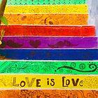 Rainbow Stairs by Barbara  Brown