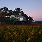 Autumn At Hahndorf Hill Winery by Kazzii