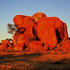 The Devil's Marbles by Bette Devine