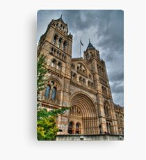 The Natural History Museum Canvas Print
