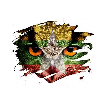 Myanmar Flag and Menacing Owl by ockshirts
