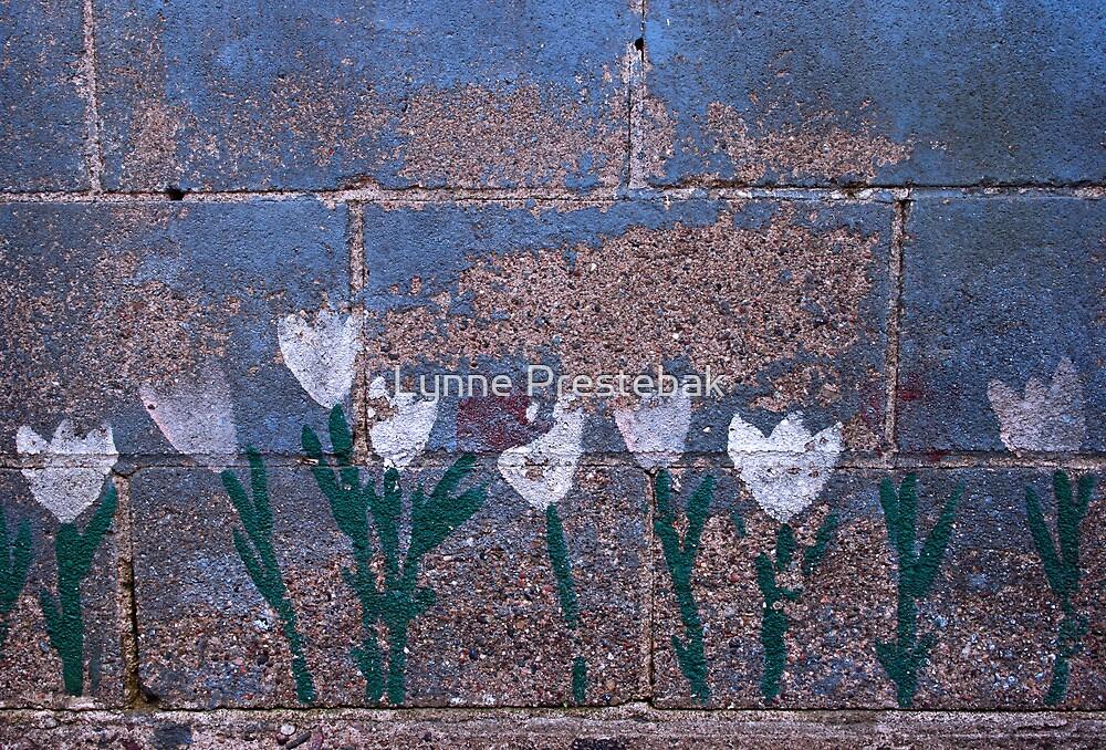 wallflowers by Lynne Prestebak
