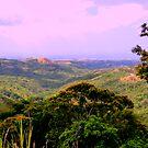 El Valle, Panama Countryside by Al Bourassa
