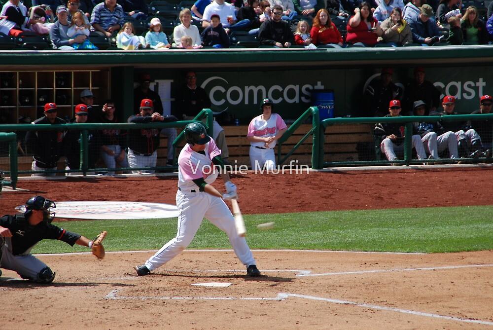 Baseball Game by Vonnie Murfin