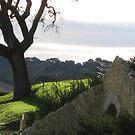 Sunstone Winery by Snowkitten