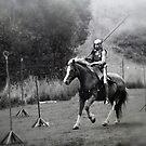 Knight in Shining Armour - Gumeracha, SA by Gerijuliaj