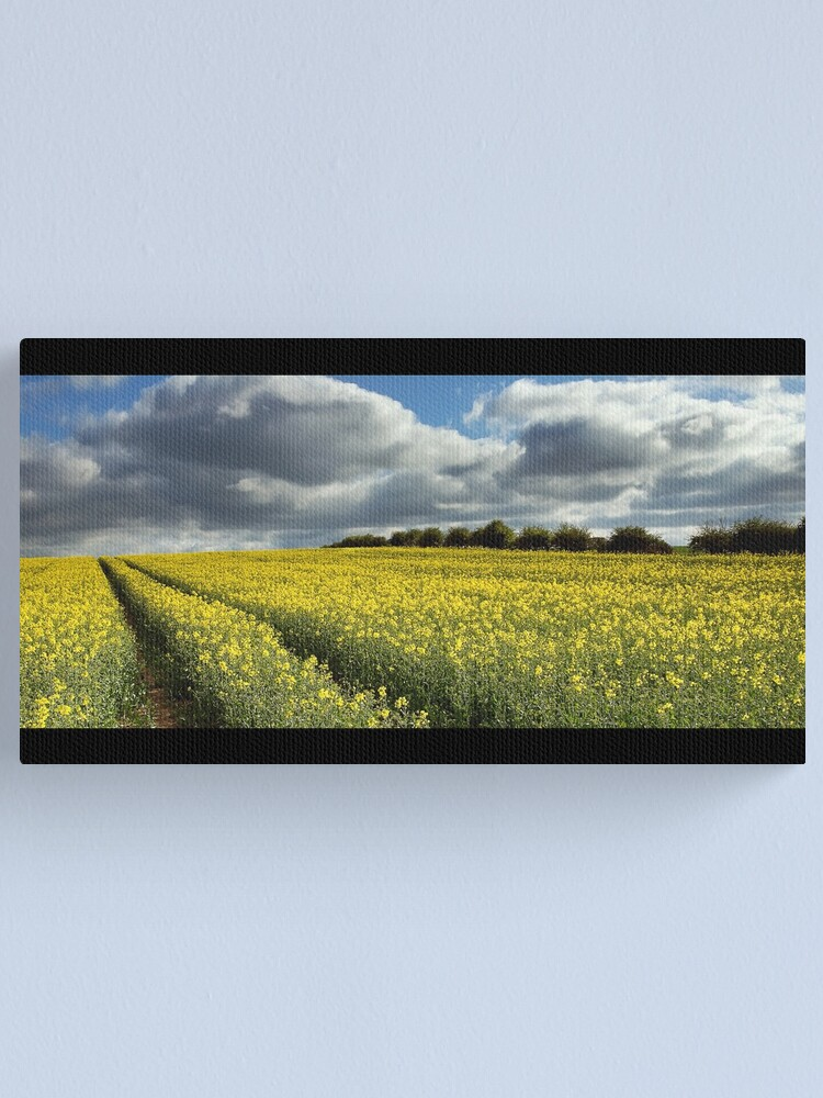 Alternate view of Rape field Canvas Print