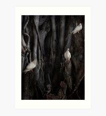 The Banyan Tree Art Print