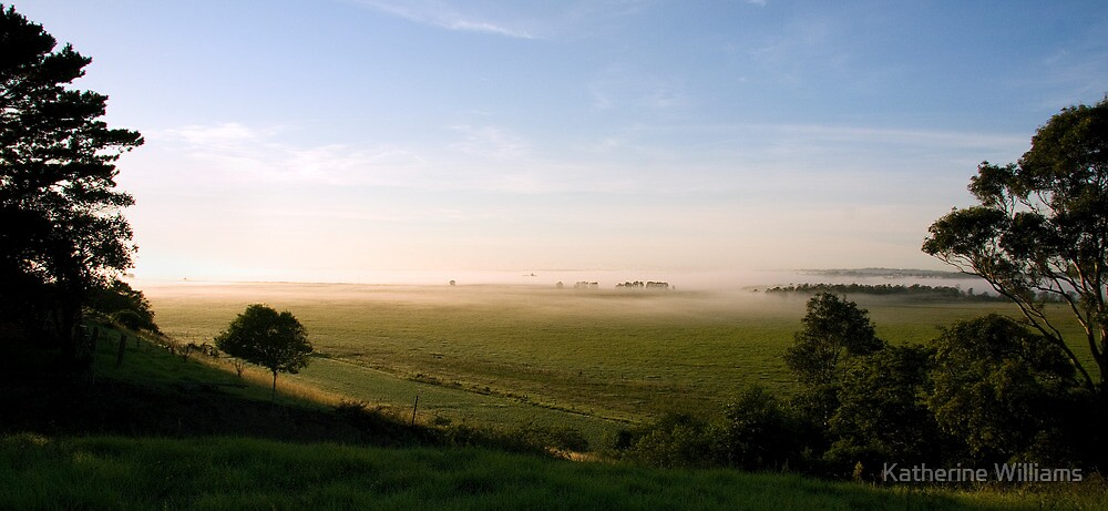foggy valley by Katherine Williams