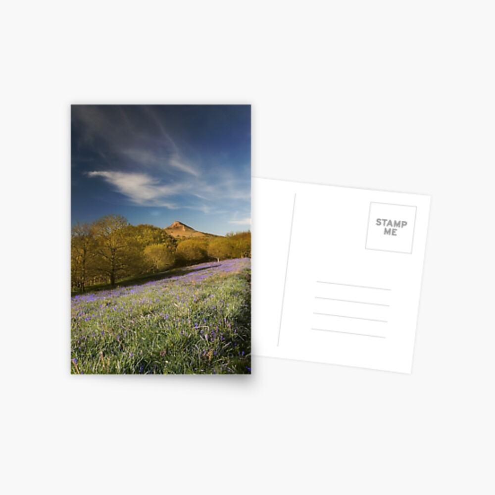 The Bluebells at Roseberry Topping Postcard