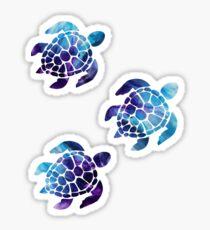 Package of Sea Turtles Sticker
