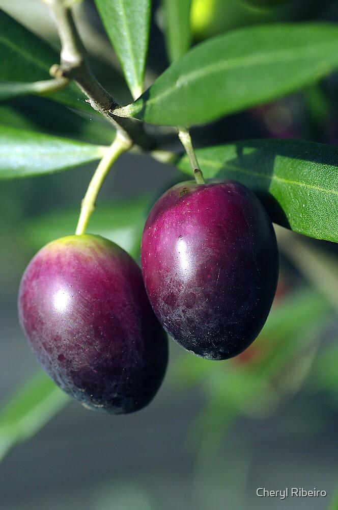 olives by Cheryl Ribeiro