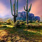 Desert Monarchs by BGSPhoto