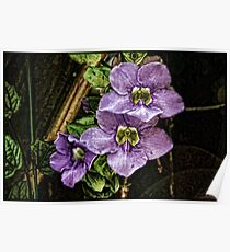 Flowers On The Vine Poster