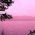 Windermere in Pink by Ladymoose