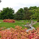 Floral park Bordeaux 2 by 29Breizh33