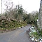 Landstraße im Winter, Devon von lezvee