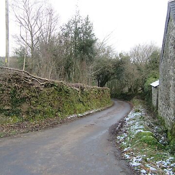 Country Lane in Winter, Devon by lezvee