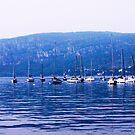 boats on lake garda by xxnatbxx